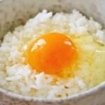 関東で卵かけご飯の人気店5選!常識を覆す究極のTKG