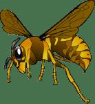 スズメバチに刺されたら?正しい応急処置~病院まで紹介