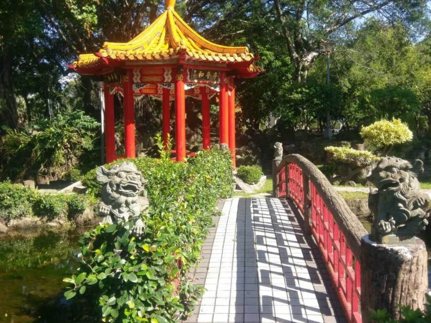 到介壽公園賞杜鵑,有涼亭、水池的介壽公園非常適合全家大小的親子出遊。