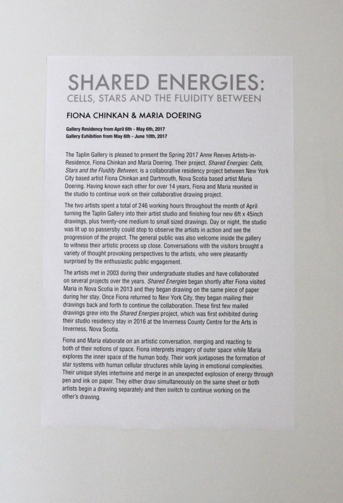 Gallery Statement - Princeton 2017
