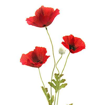Artificial Flame Red Poppy Flower 63cm   Decorative Plastic Poppies     Artificial Flame Red Poppy Flower 63cm Decorative Plastic
