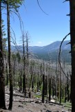 The Angora Ridge Fire, six years later