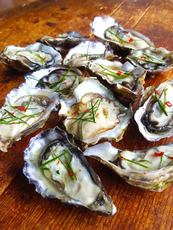 Oysters with kaffit lime leaves 1