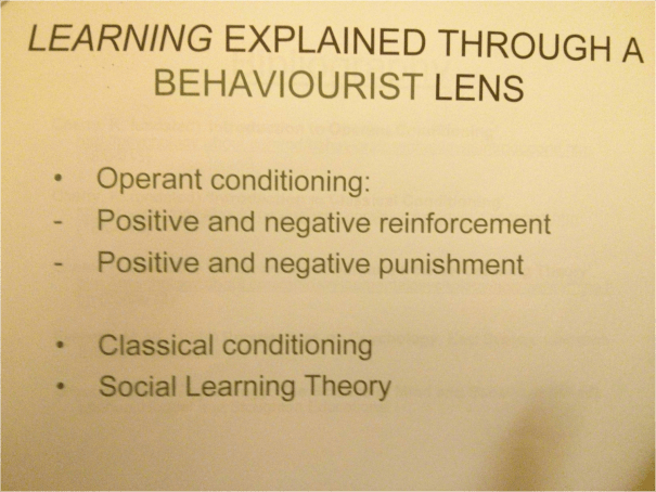 Image of the sixth slide used in the PowerPoint Presentation given by Chris Larham as part of the 'Psychological Perspectives of Development' (CORC 112) module in 2013.