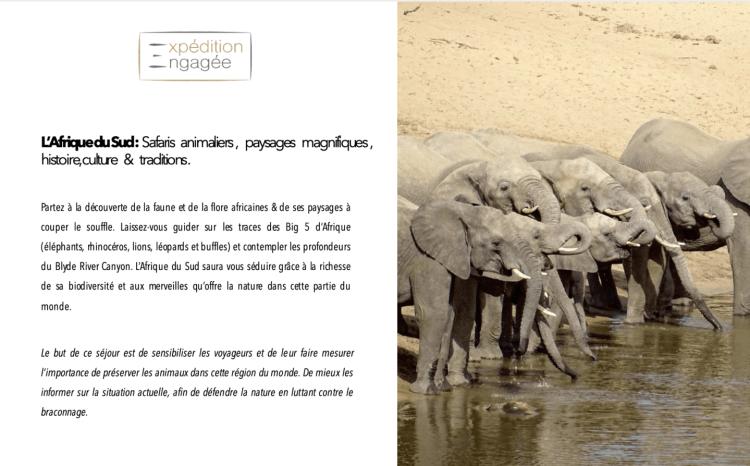 expédition engagée safari yoga