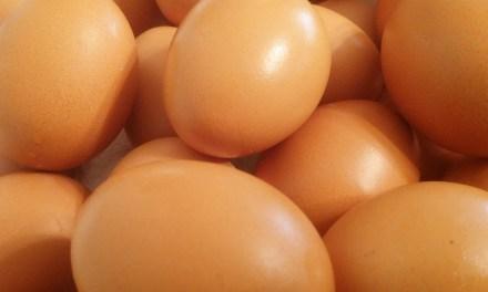 달걀을 매일 먹어도 괜찮을까?