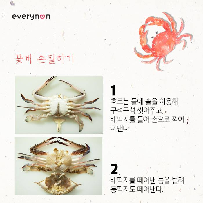 autumn swimming crab 05