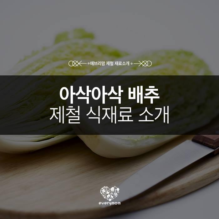 napa cabbage 01
