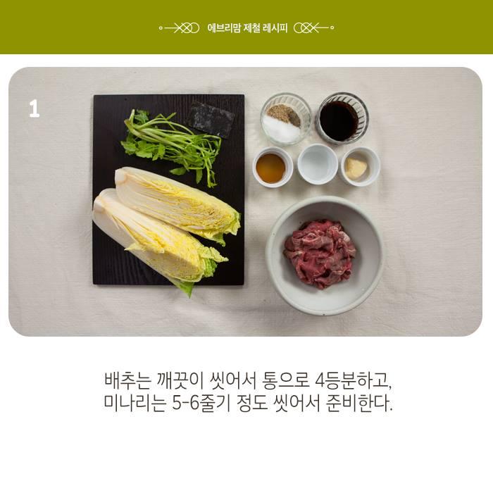 napa cabbage 16