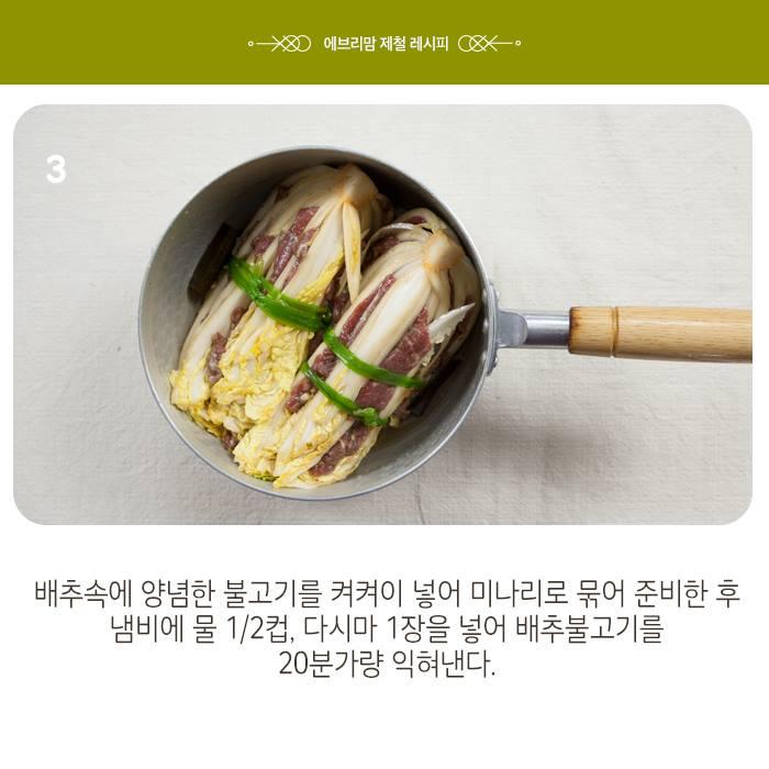 napa cabbage 18