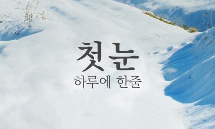 하루에 한줄 _ 고종만 '첫 눈'