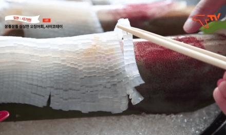 [일본 사가현 여행] 후루유 온천가와 오징어 명가 사이코테이