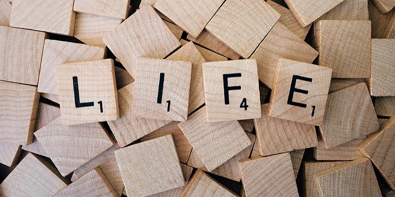 인생에서 실패와 후회가 갖는 의미