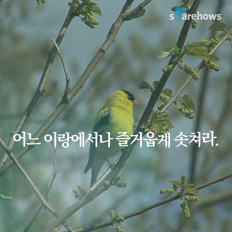YunDongju-spring-poem-07
