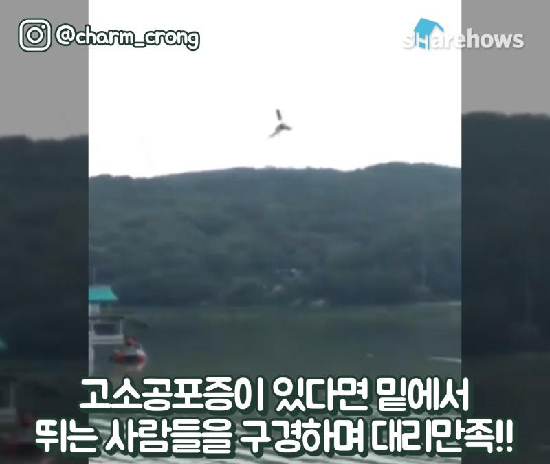gyeonggi-activity-best-5-17