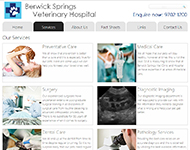 Berwick Springs Vet Website