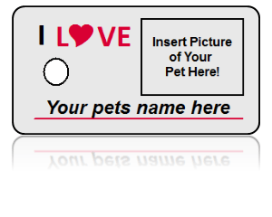 Build Personal Pet Key Tag
