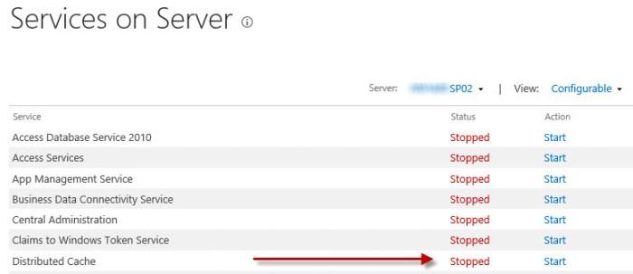 service on the server