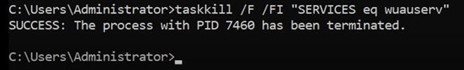 "taskkill /F /FI ""SERVICES eq wuauserv"""