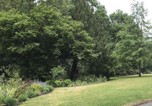 Eastcote Gardens 2 hour walk around Pinner