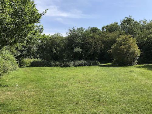 The hidden green spaces of rural Ruislip