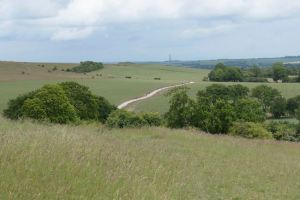 A Buckinghamshire walk