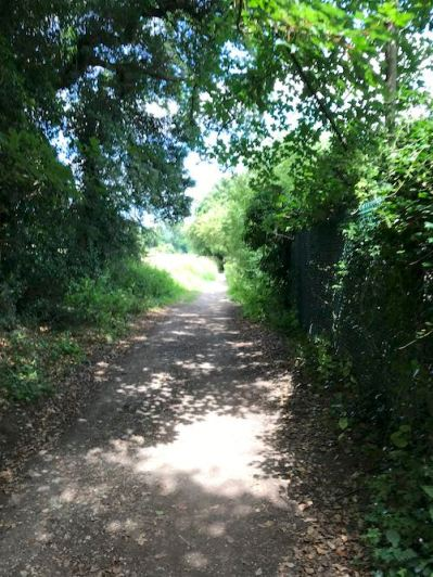 The start of the Chalfont St Giles circular walk takes you past some posh back gardens and provides shelter from the sun