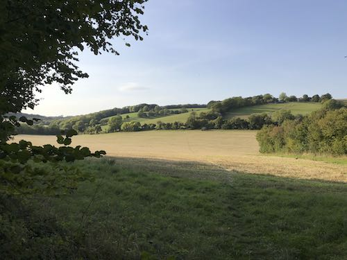 More great views from the Bledlow Circular Ride, part of the circular walk from The Charles Napier