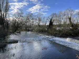 Harefield Loop Walk via the canal, lakes and woodland