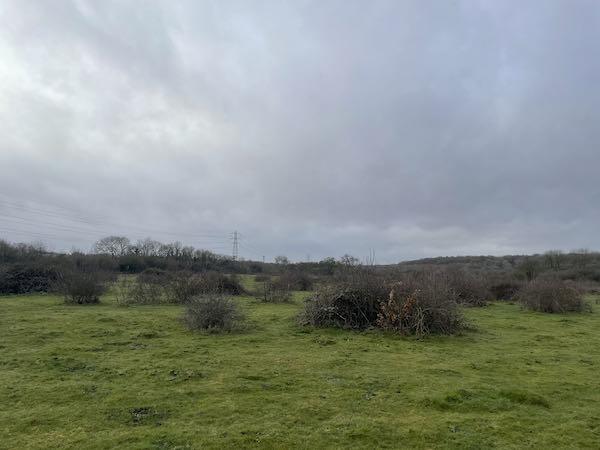 Croxley Common Moor on the Rickmansworth Loop walk