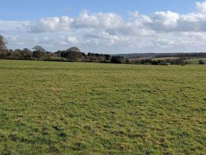Mud free Chiltern Walk - Chesham to Pednor & back