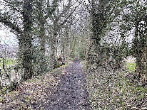 Toby's Lane on the Little Missenden loop