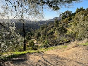 Ferndell to Griffith Park Observatory a sound experience