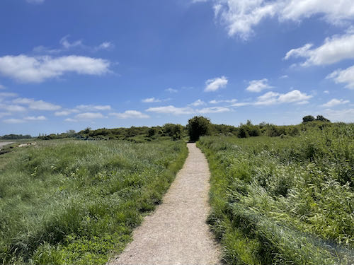 Out to open countryside on the Faversham to Whitstable walk