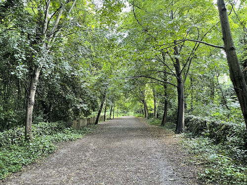 The main route through Holland Park on the central London parks walk