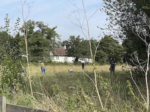 Volunteers help with biodiversity on the Pinner to Stanmore country walk