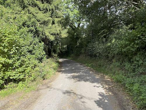 Another climb on the Church Stretton & Long Mynd walk