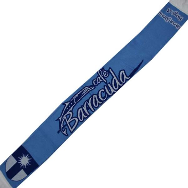 Зенит-Barracuda1