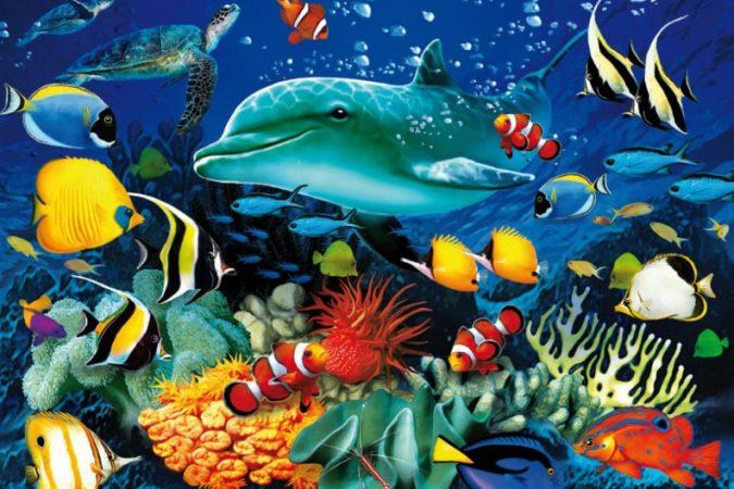 Contoh gambar montase laut