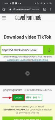 tautan video TikTok