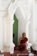 Monk at Shwedagon Pagoda, Yangon, Myanmar