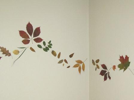 pressed leaves on wall