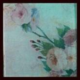 PicsArt_03-26-03.37.36
