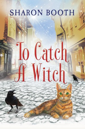 Throwback Thursday The Witches of Castle Clair Halloween's Coming Book 3