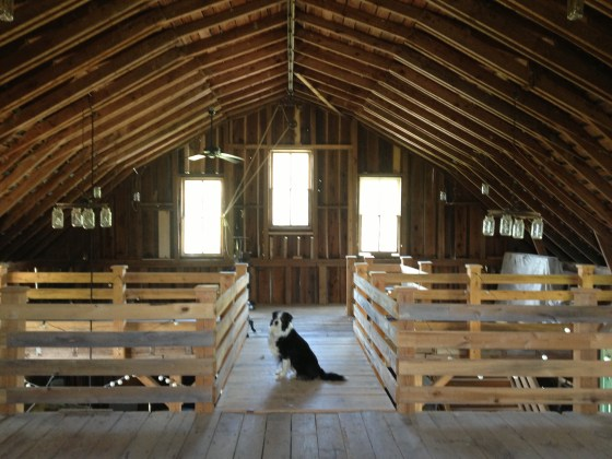 Getting the barn ready for the big day!!!