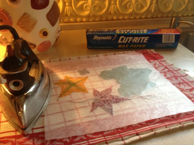 Supplies needed: Iron, flowers or fall leaves and wax paper