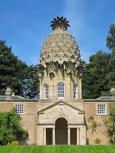 pineapple building