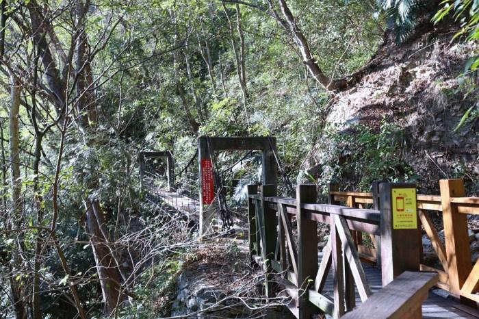 谷關景點 德芙蘭步道 被林蔭包圍的綠色步道 谷關必訪溫泉步道