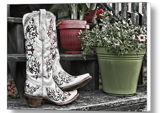 Farm Country Americana