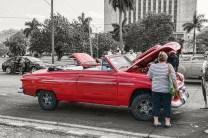 Top Down in Cuba by Sharon Popek